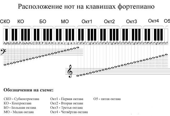 Схема расположения клавиш на пианино